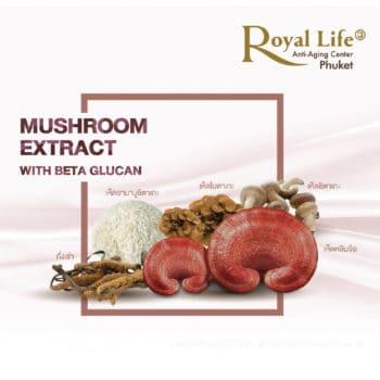 MUSHROOM EXTACT
